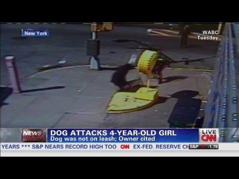 Dog attacks 4-year-old girl