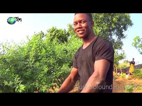 Adventurous Hiking borbor    Lakka Freetown   Lion Mountain