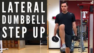 Lateral Dumbbell Step Up Exercise Video
