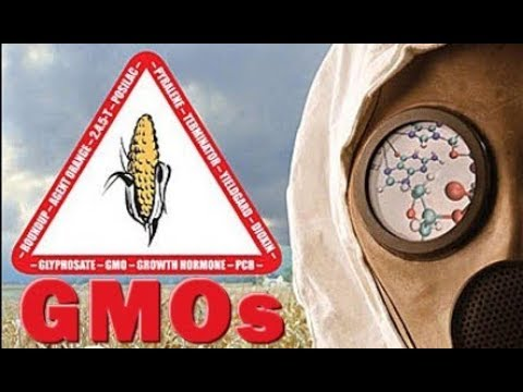 Monsanto & GMOs - Trade Agreements Threaten Global Food Supply - Monsanto Loves You