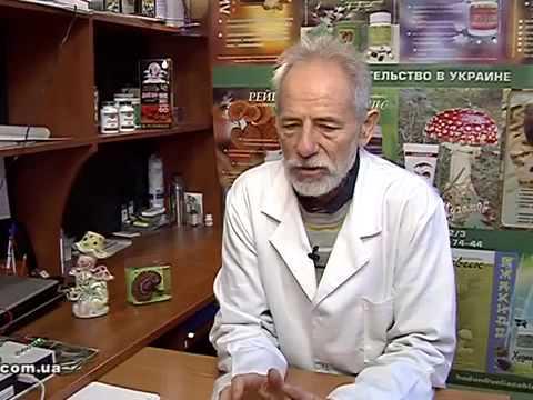 Гриб Веселка сушенный крупнорезаный - купить по низкой