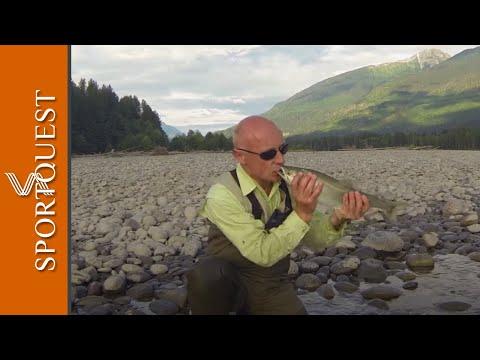 Salmon And Steelhead Fishing At Kalum River Lodge, Canada 🇨🇦