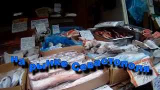 Цены на рыбу в городе Севастополь на декабрь 2014.(Цены на рыбу в городе Севастополь на декабрь 2014. Вчера прошелся по рынку