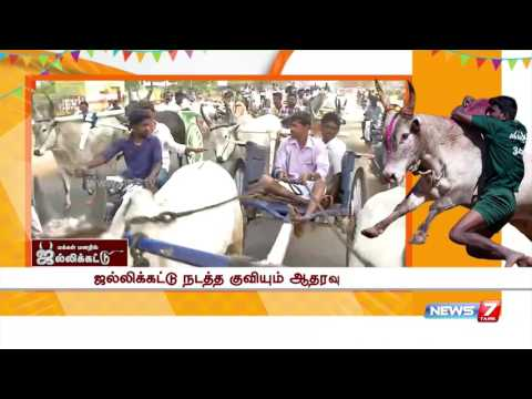 Rekla Race bull show off conducted at Coimbatore : reporter update | News7 Tamil