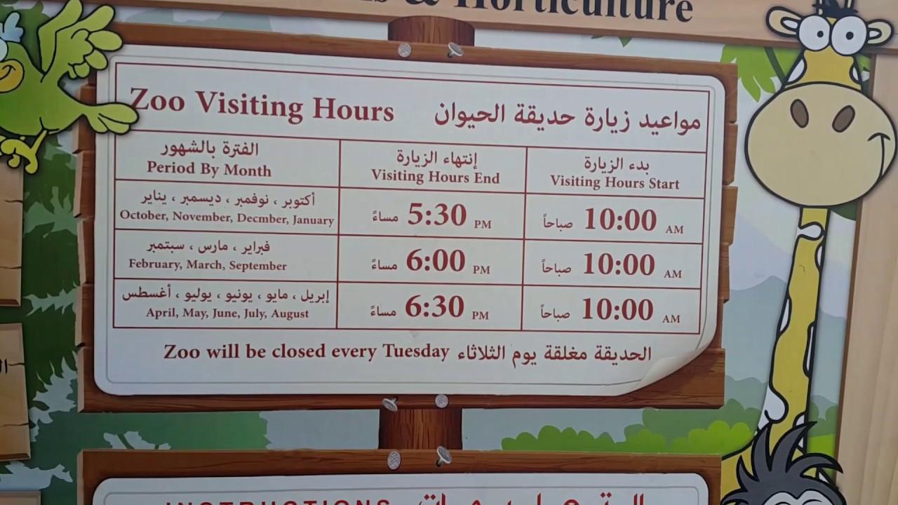 Dubai Zoo Visiting Times مواعيد زيارة حديقة حيوانات دبي Youtube