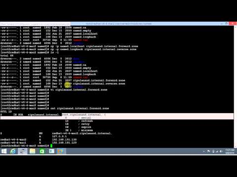 DNS Config Part 1 - Primary DNS Server (Bind 9.8) - Redhat Linux 6
