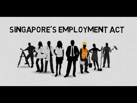 All you need to know about Singapore's Employment Act Part 1