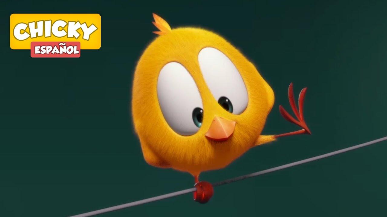 ¿Dónde está Chicky? 2020   CHICKY EL ACROBATA   Dibujos Animados Para Niños