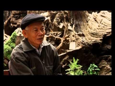 Phỏng vấn nghệ nhân gỗ LŨA   Chu Văn Hồng