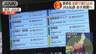 首都高 大雨の影響で午後4時に全面通行止め(19/10/12)