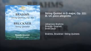 String Quintet in G major, Op. 111: III. Un poco allegretto