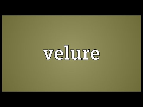 Velure Meaning