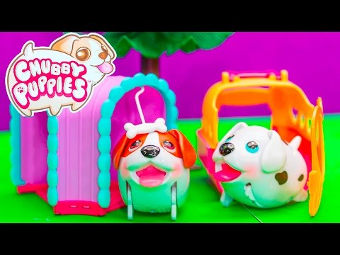 CHUBBY PUPPIES Beagle Tunnel Playset Ultimate Dog Park Toy Review
