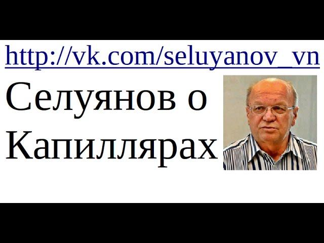 В.Н. Селуянов