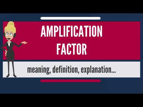 What is AMPLIFICATION FACTOR? What does AMPLIFICATION FACTOR mean?