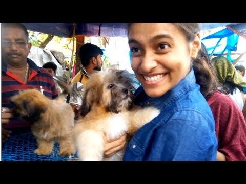 Cute Girls Get Their Favourite Lhasa Apso Puppy At Galiff Street