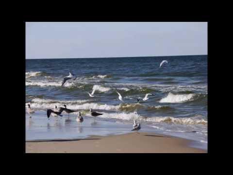 Godewind  Kumm mit ant Meer