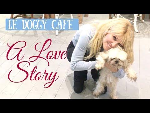 Le Doggy Cafe - Vegetarian Vegan Restaurant Montreal Funny Dog Video