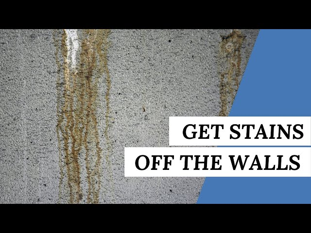 How To Get Stains Off The Walls Without Chipping The Paint | Cleaning Tips #short