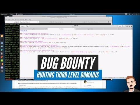 Bug Bounty - Hunting Third Level Domains