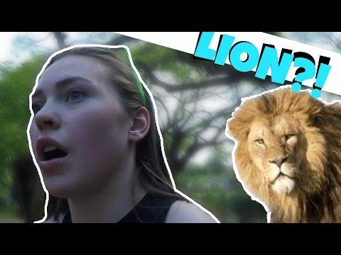 WE FOUND A LION IN HAWAII... my spirit animal || Fourtaz