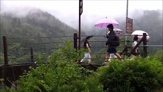 Shirakawago Village June 2014