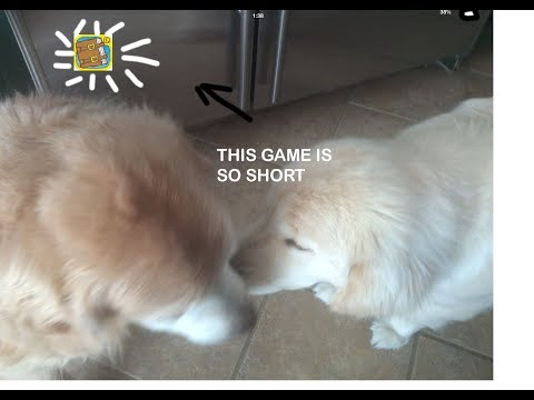 THE WORLDS SHORTEST GAME |