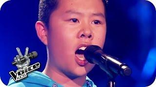 Wolfgang Amadeus Mozart - Der Hölle Rache (The Anh)   The Voice Kids 2016   Blind Auditions   SAT.1