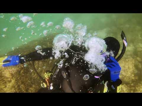 Dive Against Debris Specialty