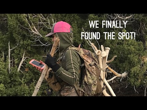 """Shedcation Part#2 Elk Shed Hunting """"INQUEST 2018"""" Antler Trader"""