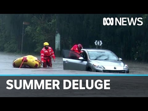 Flash flooding hits northern NSW and Sydney as state braces for weekend downpour | ABC News