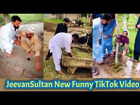 JeevanSultan Very Funny TikTok Videos | Pakistani Punjabi Famous TikToks