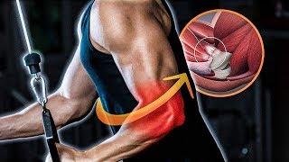 En antebrazo articulación dolor la del