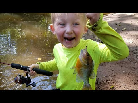 Fishing & Exploring Remote Tiny Creek With My Boys - Fishing For 5 Species