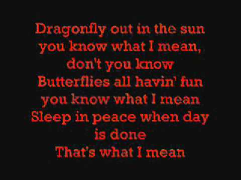 Ed Sheeran - Feeling Good (Lyrics)