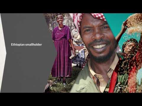 STARS Strengthening African Rural Smallholders