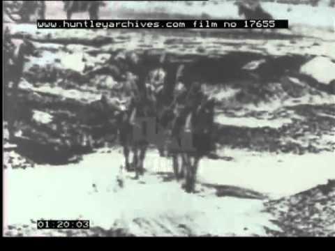 Boer War, 1900's - Film 17655