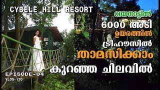 Cybele Hill Resort Wayanad EP-4 ഹണിമൂൺ വരുന്നവർക്ക് താമസിക്കാൻ പറ്റിയ വയനാട്ടിലെ അടിപൊളി റിസോർട്ട്