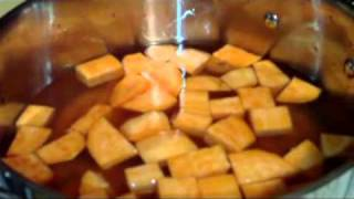 Sweet Potato And Carrot Puree For Gastroparesis