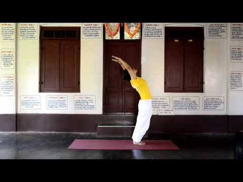 30 minutes practice of Sivananda Yoga for beginners to intermediates