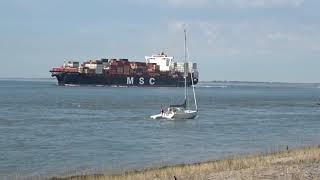 Scheepvaart Hansweert