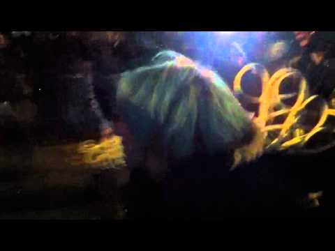 Musician Activist Wall Street Occupier Lauren Digioia Gets Arrested