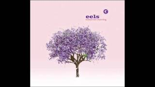 Watch Eels The Morning video