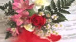 Rackets & Drapes - Valentine