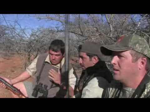 Khalid Sultan Lioness Hunt in Limpopo Province Africa