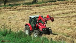 Harvesting Straw - Raking for Baling, Massey Action.