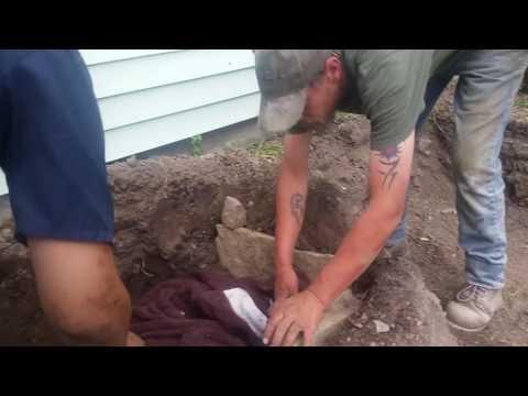 My dog being buried