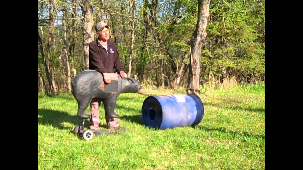medium resolution of tip black bear hunting shot placement