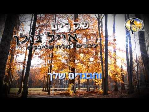 שקרים - אייל גולן - קריוקי ישראלי מזרחי Eyal Golan Karaoke