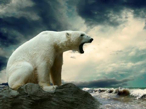 Мир путешествий.Арктический оазис Канады.Документальный фильм.